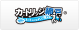 カートリッジ網戸Ⅱ