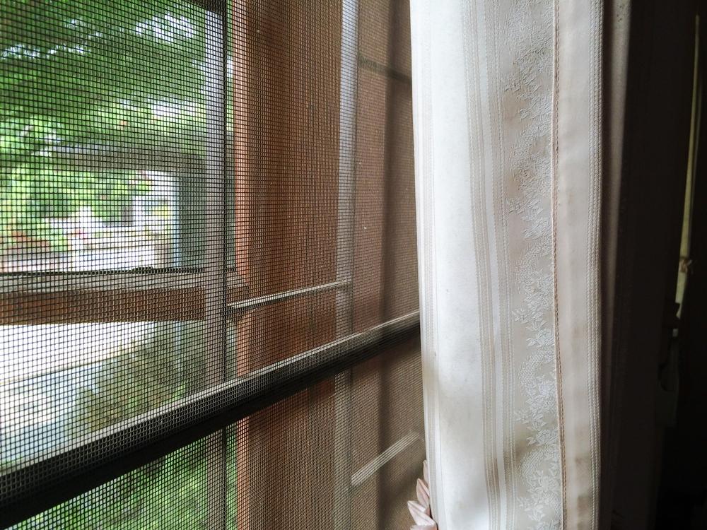 網戸の掃除がアレルギー症状を軽減する第一歩